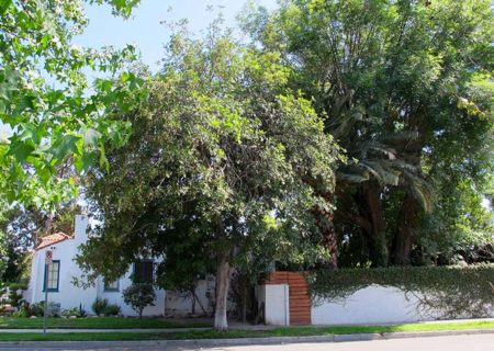 5659-Beck-Ave-North-Hollywood-91601-House-For-Sale-Figure-8-Realty-Los-Angeles-Finn-Egan-5